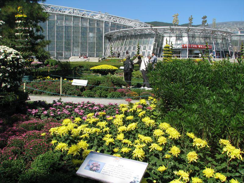北京植物园是国家级aaaa旅游景区,全国林业科普基地,全国野生植物保护